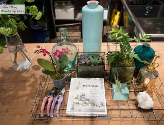 NYC Apartment Plant Styling Workshop at PlantShed (NYC)